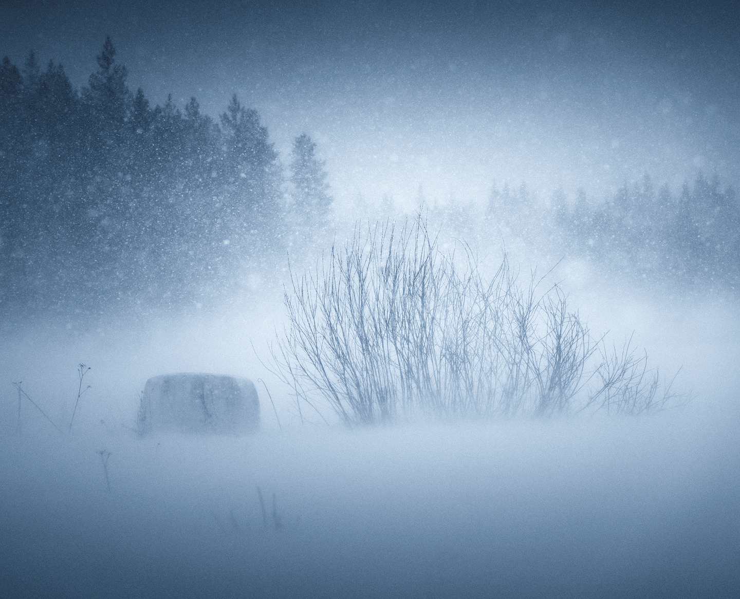 In The Snowstorm