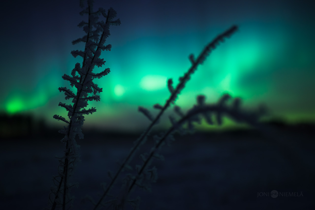 Frost And Auroras
