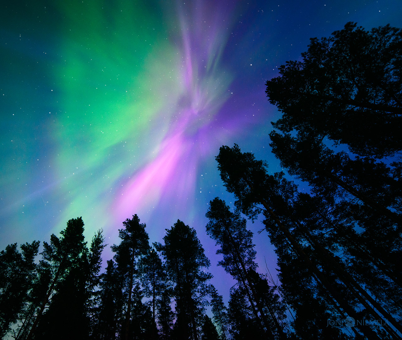 Pink Northern Lights