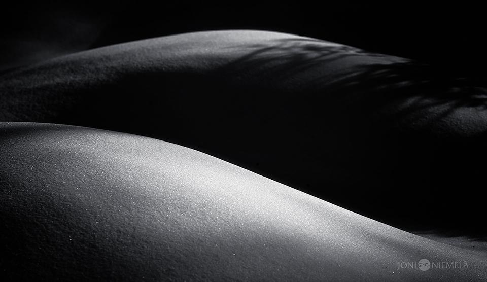 Between Light & Shadow