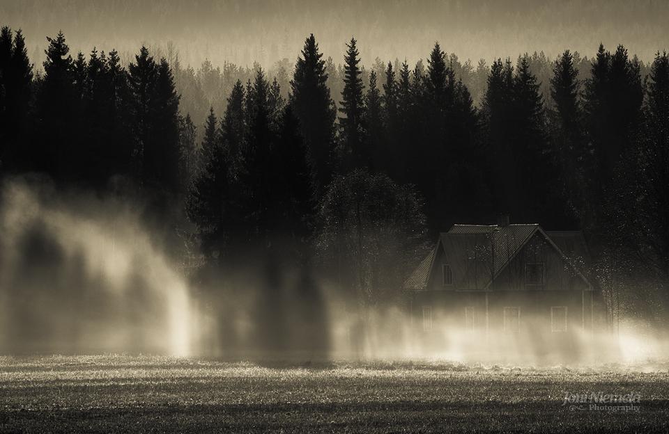Shadows On The Mist