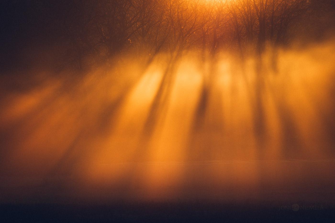Bronze Rays