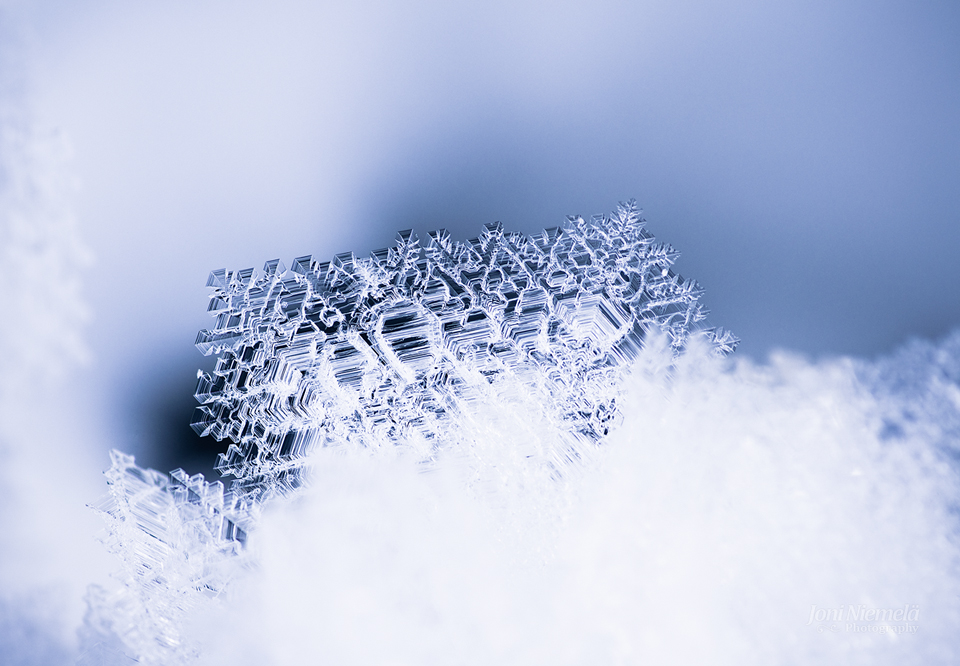 Details Of Ice