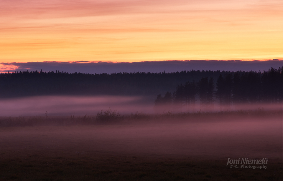 Foggy Fall Evening