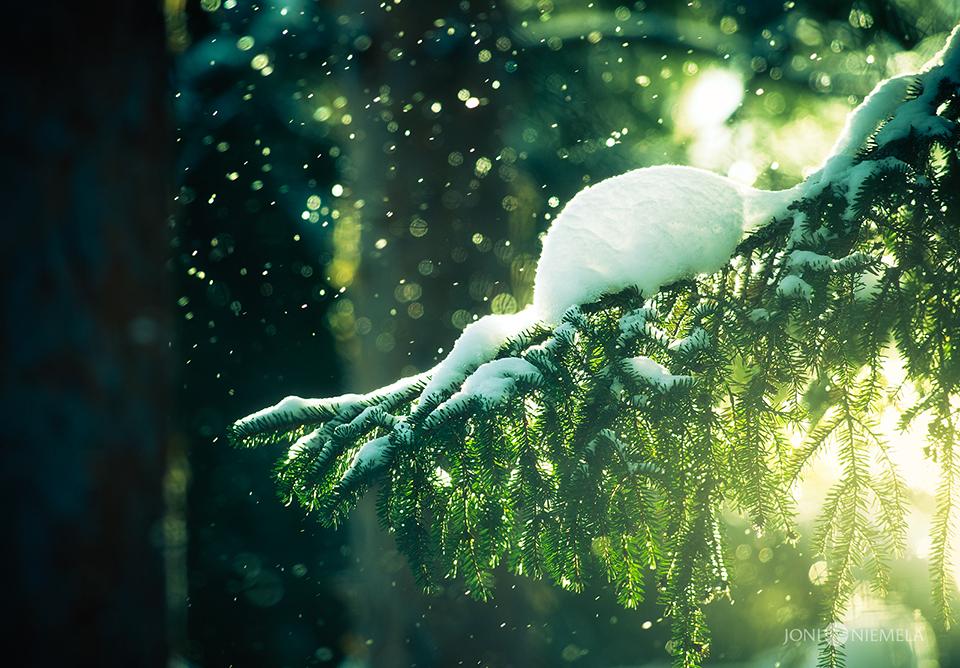 Snowrain