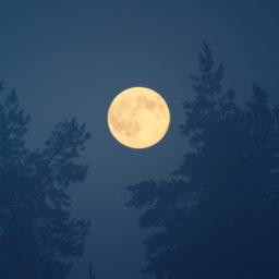 moon_focused
